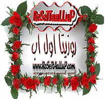 mahmoud0077